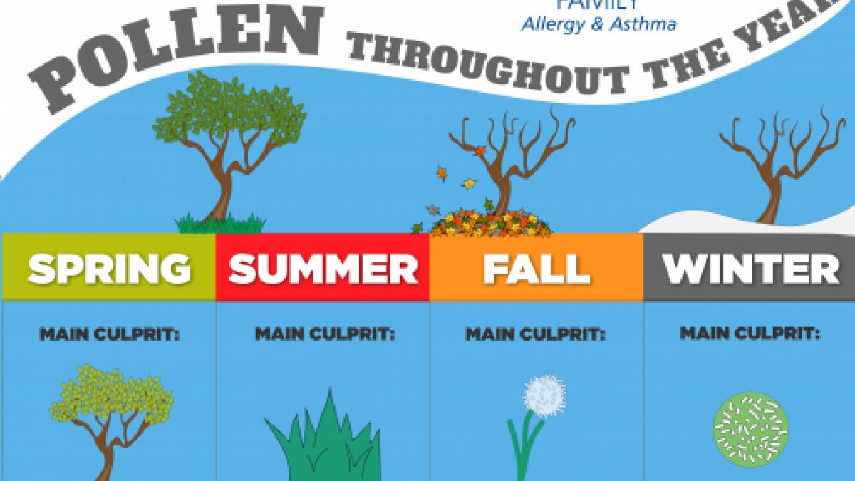 allergy seasom
